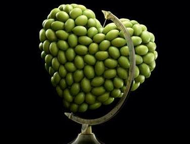 olive mappamondo